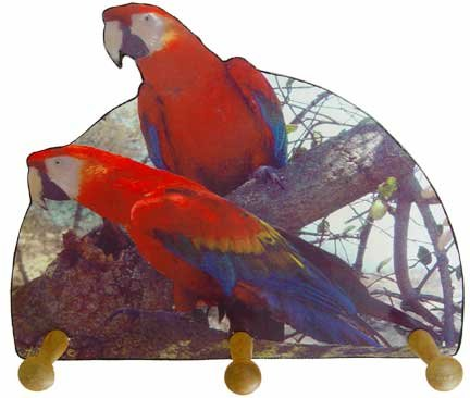 Scarlet Macaw Tropical Parrot macaw Key rack holder Handmade Gift
