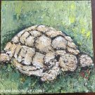 Palette Knife Painting for sale Sulcata Tortoise Original Acrylic Painting