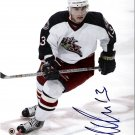 Nikoli Zherdev Columbus Blue Jackets signed 8x10 photo