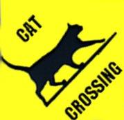 "corrugated Sign ""CAT CROSSING"""