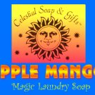 Apple Mango Natural VEGAN Laundry Soap Powder SAMPLE 6 oz. 5-10 Loads