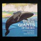 Whales Giants of the Sea Katherine Marko Beach HCDJ