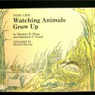 Pond Life Watching Animals Grow Up Wong Berson Vessel
