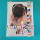 Pug Greeting Cards 10 Pack Dog Pet All Occasion Blank Message Tessa May Birthday