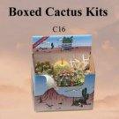 Cactus Gift Box Arizona Grown 6 Plants Southwest Gift Ready To Grow Succulent