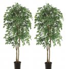 Set of 2 - 7' Long Tip Artificial Ficus Trees in pot - ltf927-gr