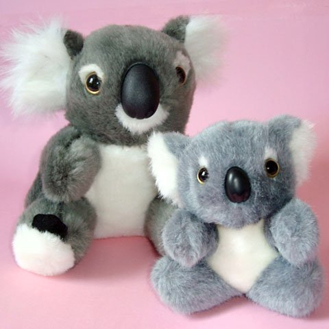 Koalas Plush Toys (pk of 2) ~ 16cm & 12cm high, Very Cute