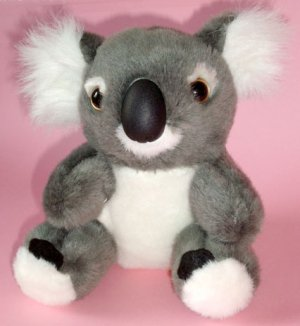 Koala Plush Toy ~ 16cm high, Post from Australia