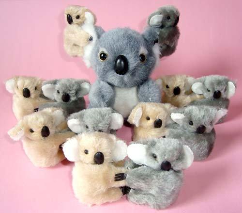 Clip on Koala Bears (12) plus plush Koala Bear (12cm)