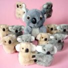 Clip on Koala Bears (12) plus plush Koala Bear (12cm)
