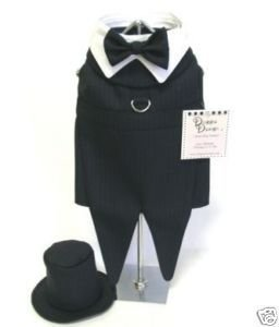 Dog Clothes Black Tuxedo With Tails & Matching Leash