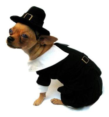 Dog Clothes Adorable Pilgrim Boy Costume