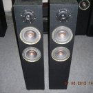 "Rs 6000 1"" Tweeter 6"" Woofer x 2 2 Way 120 Watts RMS Tower Speaker"