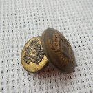 Argentina Vintage Royal Shield Coat of Arms Button 2 Buttons LOT