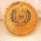 Argentina Army Coaching Surveillance Authority Bronze Plate Badge