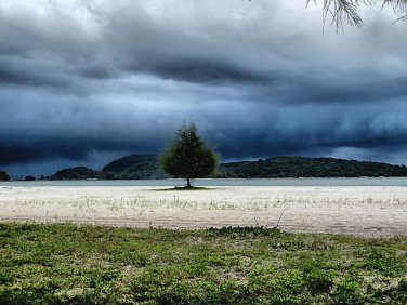 "Seascape Storm Beach PHOTOGRAPH  Photo  8X10"" & BIGGER"