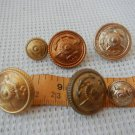 Argentina Navy Marines Infantry IMARA  Uniform Button Buttons LOT OF 6 #3