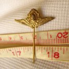 Argentina Air Force Pin Badge DICTATORSHIP TIMES #2