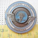 Argentine Air Force Professional Teams   Emblem Badge Pin