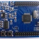 LPC2148 small system board (for ban solution xbox360 hard drive - LPC2148 module)