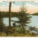 Color Postcard  Among the Thousand Islands Lake of the Woods Ontario Canada