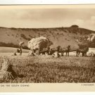 Postcard Photograph from the Times Harvesting on the South Downs