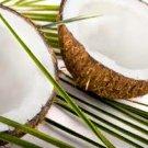 Coconut Perfume Oil