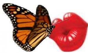 Butterfly Kisses Scented Hand Sanitizer