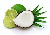 Coconut Lime Scented Hand Sanitizer