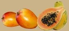 Mango Papaya Scented Hand Sanitizer