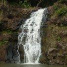 Tahitian Waterfall Scented Hand Sanitizer