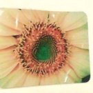 Mouse Pad Sunflower 9 x 7 photo computer new