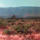 Desert Mountain 8x10 photo print new