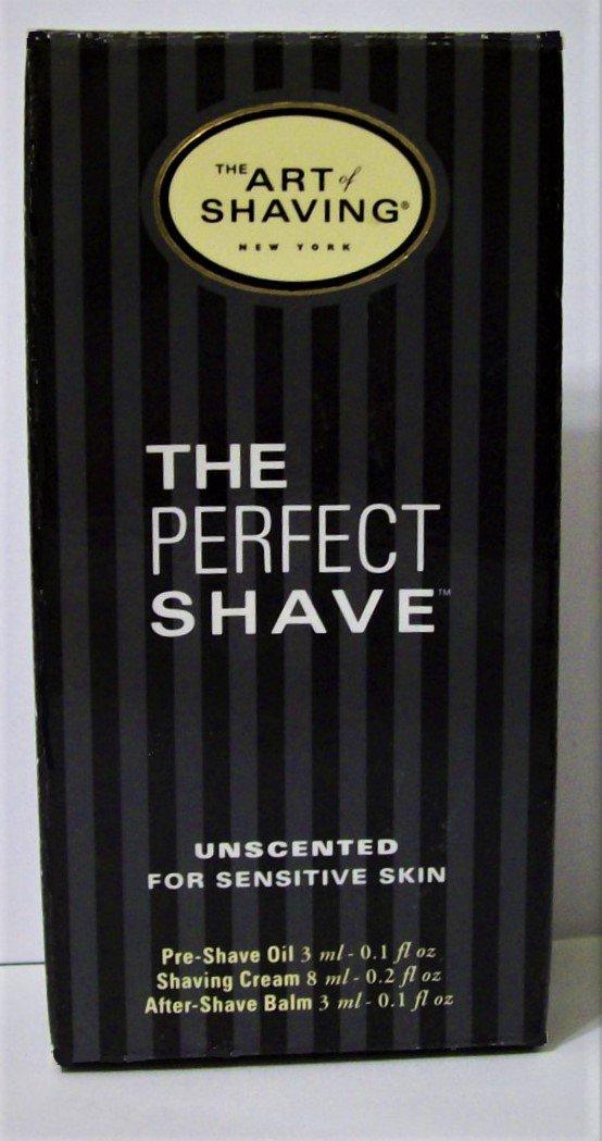 The Perfect Shave Kit Art of Shaving travel men new