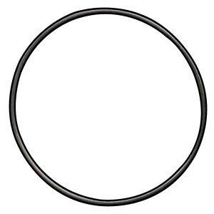 O Ring, Face Cap, Large
