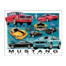 Ford - Mustang - From Past to Present Tin Sign