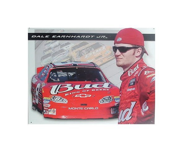 Dale Earnhardt Jr. - #8 Dale With Car Tin Sign