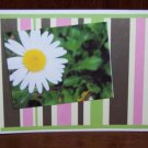 Daisy Get Well Card - FREE shipping!