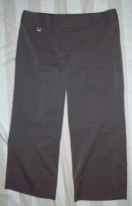 NWT BCBG Maxazria Flat Front Crop Pants 4 NEW $110