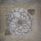 Pillow Cover Rose Bud Silver, Chenille Belgium, 18x18, Free Shipping