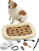 8pc Accessory Set for Small Pet