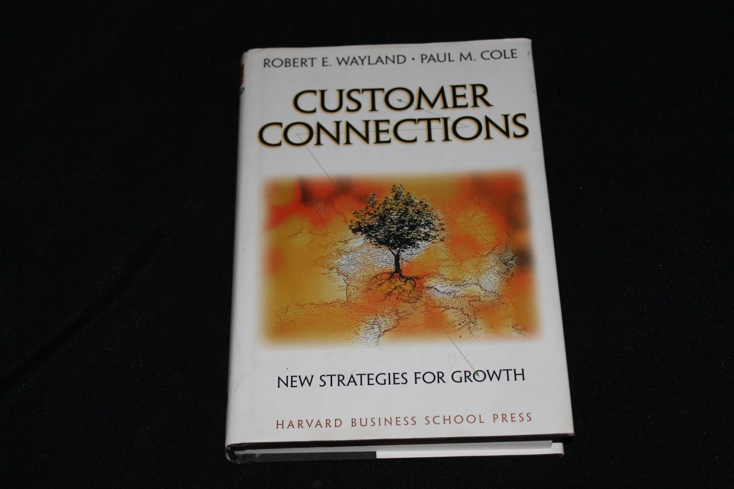 CUSTOMER CONNECTIONS - Hardcover Book New Strategies for Growth business hardcover book