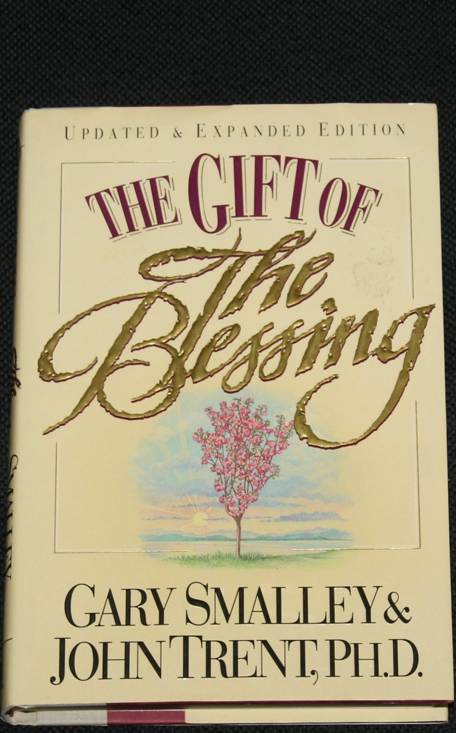 The Gift of the Blessing Christian religious book - religion reading book by Gary Smalley John Trent