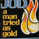 Job A Man Tried As Gold - Christian religious book Bible story Biblical issues paperback