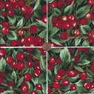 Fresh Picked Cherries   4 inch 100% Cotton Novelty Fabric Quilt Squares TB1