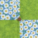 4 inch Garden Daisy Daisies Flowers Fabric Squares 100% Cotton  ZE1