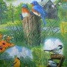 MadieBs Spring Birds  Custom  Window Valance New