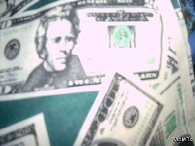 MadieBs Money Dollars Cash Custom  Pillowcase  w/Name