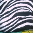 MadieBs Zebra Stripe Crib Toddler Bed Sheet Set New