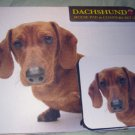 Dachshund red  Dog Mousepad & 2 coaster set Littlegifts pet mouse pad